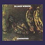 Black Widow Sacrifice