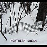 David King Northern Dream