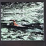 Bruce Main Swimming In The Pixel Sea