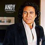 Andy Tahammol