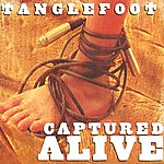 Tanglefoot Captured Alive
