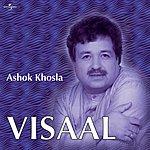 Ashok Khosla Visaal
