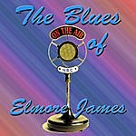 Elmore James The Blues Of Elmore James