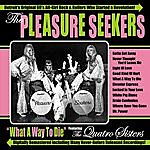 Pleasure Seekers What A Way To Die