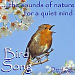David Sun The Sounds Of Nature For A Quiet Mind: Bird Song