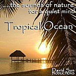 David Sun The Sounds Of Nature For A Quiet Mind: Tropical Ocean