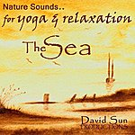 David Sun Nature Sounds For Yoga & Relaxation: The Sea