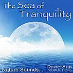 David Sun The Sea Of Tranquility (Nature Sounds)