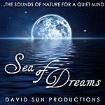 David Sun Sea Of Dreams (The Sounds Of Nature For A Quiet Mind)