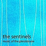 The Sentinels Music Of The Pleistocene