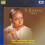 N. Ramani N.Ramani