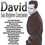 David Sus Mejores Canciones-Tecno Rumbas