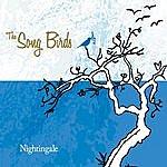 The Songbirds Nightingale