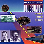 The Whiteley Brothers Bluesology