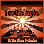 Klone House Of The Rising Sun - The Animals Tribute