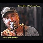 David Elias David Elias & The Casualtees, Live