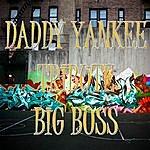Big Boss Daddy Yankee's Tribute