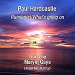 Paul Hardcastle Rainforest/What's Going On (House Mix Mashup) [Feat. Marvin Gaye]