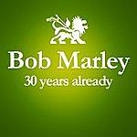 Bob Marley 1981 - 2011 : 30 Years Already... (Anniversary Album Celebrating The 30 Years Since Bob Marley's Death)