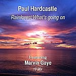 Paul Hardcastle Rainforest/What's Going On (19 Mix) [Feat. Marvin Gaye]