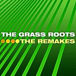 The Grass Roots The Remakes