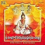 V. Ramakrishna Srimadvirat Pothuluri Veerabrahmendra Sw