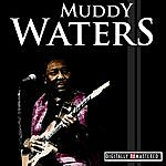 Muddy Waters Classic Years Of Muddy Waters