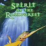 Murdo McRae Spirit Of The Rainforest