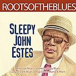 Sleepy John Estes Roots Of The Blues - Sleepy John Estes