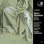 Philippe Herreweghe J.S. Bach: Oster-Oratorium