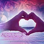 Acoustic Minds Live From The Living Room
