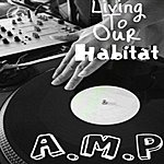A.M.P. Living To Our Habitat