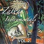 Zallen Zallen Instrumentals, Vol. 2