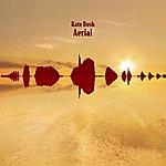 Kate Bush Aerial