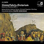 Philippe Herreweghe J.S. Bach: Himmelfahrts-Oratorium