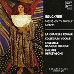 Philippe Herreweghe Bruckner: Mass In E Minor / Motets