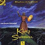 Medwyn Goodall King Shaman