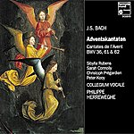 Philippe Herreweghe J.S. Bach: Adventskantaten