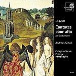 Andreas Scholl J.S. Bach: Cantatas For Alto Solo