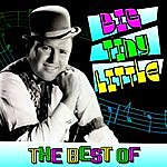 Big Tiny Little The Best Of