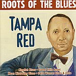 Tampa Red Roots Of The Blues - Tampa Red