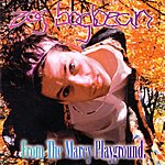 Marcy Playground Zog Bogbean: From The Marcy Playground (Marcy Playground)