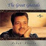 Ashok Khosla The Great Ghazals