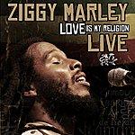 Ziggy Marley Love Is My Religion (Live)