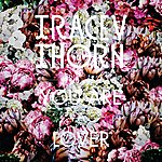 Tracey Thorn You Are A Lover