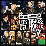 Los Tigres Del Norte Tr3s Presents Mtv Unplugged Los Tigres Del Norte And Friends