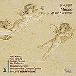 Philippe Herreweghe Schubert: Mass In A Flat Major