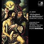 Philippe Herreweghe J.S. Bach: Cantatas Bwv 2, 20 & 176