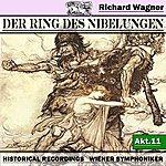 Wiener Symphoniker Der Ring Des Niebelungen, Akt.11