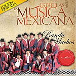Banda Machos Las Estrellas De La Musica Mexicana (Usa)